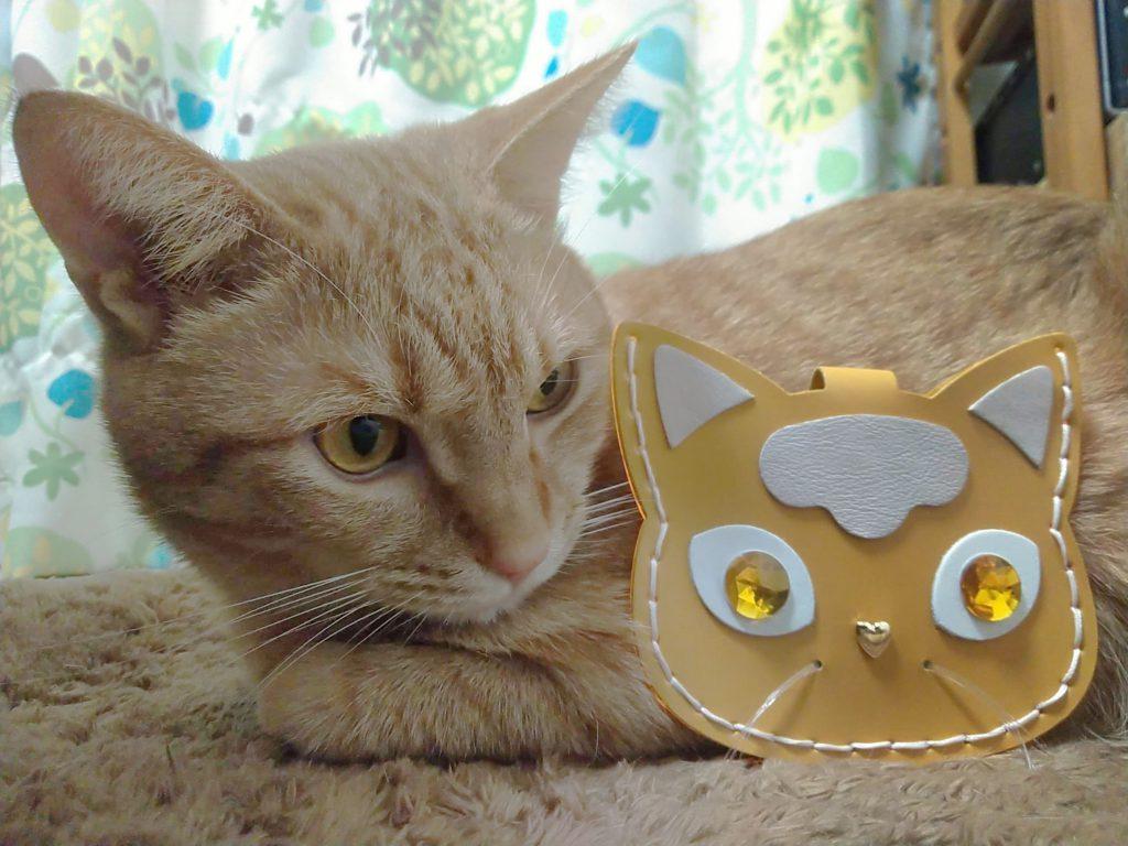 ネコさんパスケース手作り実績